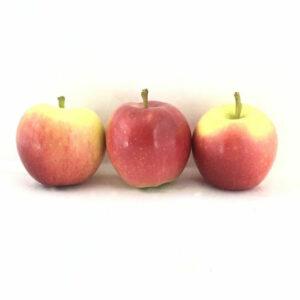 خرید سیب قرمز گالا