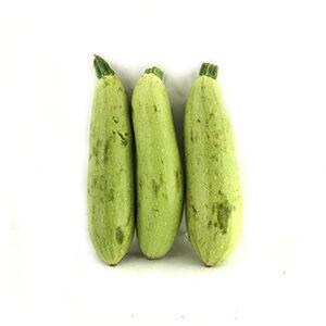 خرید آنلاین کدو سبز ارگانیک - خرید کدو سبز ارگانیک