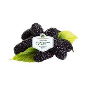خرید توت سیاه